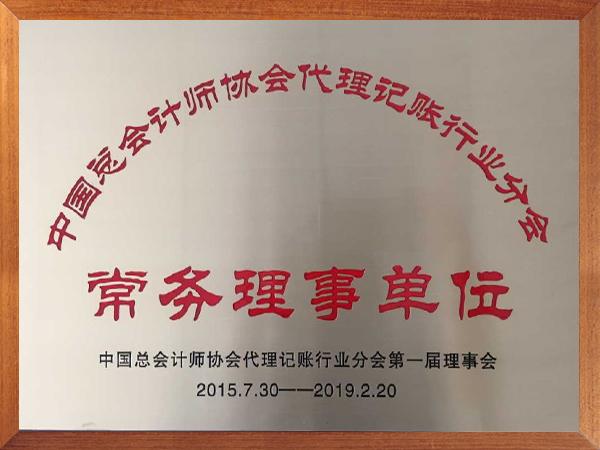 中国总会计师协会代理记账行业分会常务理事单位